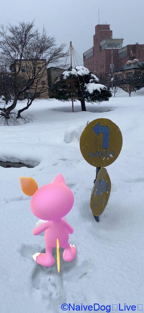 青森県合浦公園
