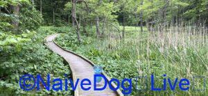 下田おいらせ公園